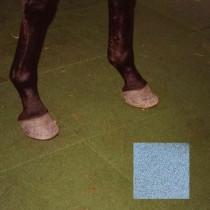 Dalle caoutchouc pour box à chevaux 50x50x2,5 cm couleur grise, le M2