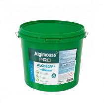 Décapant Peinture et Revêtement, Algidécap +, 20 litres