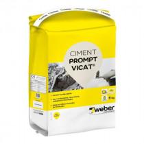 Ciment Prompt Vicat® à Prise Rapide Milieux Humides Weber 5kg