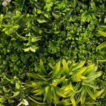 Mur Végétal Artificiel Liseron 80 mm 1m x 1m